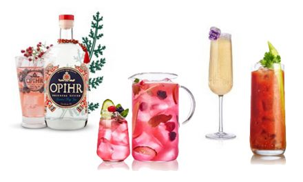 Impress your guests with the very best gin Christmas cocktail serves